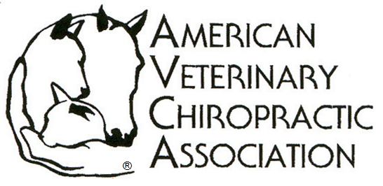 American Veterinary Chiropractic Association AVCA
